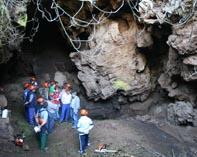 Reforestación en la Cueva del Cañaveralejo de Adamuz